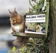 Yep, pretty squirrelly.