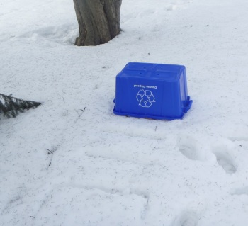 The culprit - the elusive recyclables bin!