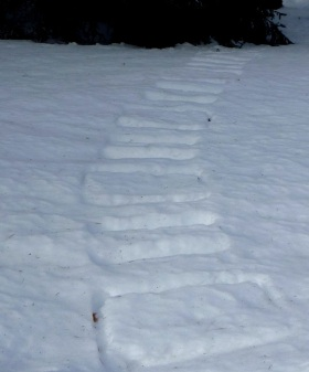What caused these mysterious tracks? Answer at the end of this post.