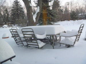My deck, January 9.