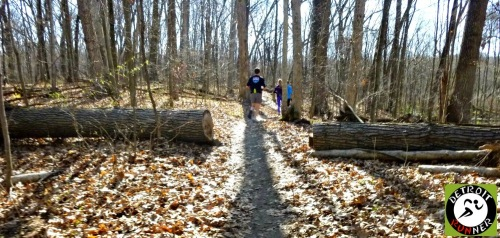 Downed trees are another feature of trail running. At least this one was cut - they aren't always.