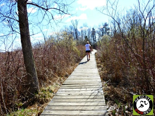 To get over swampy areas, there are boardwalks. Sometimes.