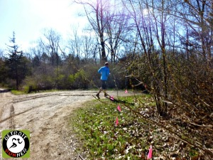 Race routes are marked with flags. RF races use pink a lot. Also, women do most of the trail marking. Coincidence?