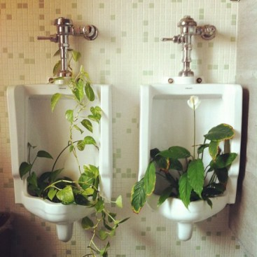 You know, the men's room is SO much more aesthetically pleasing these days!