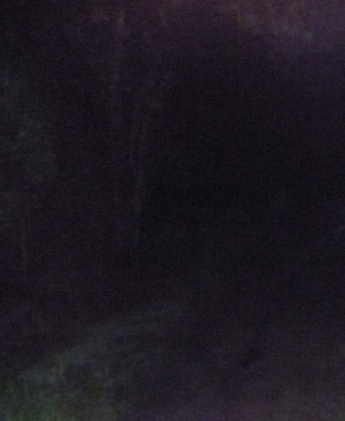 This is a trail at night with no headlamp. Good luck!