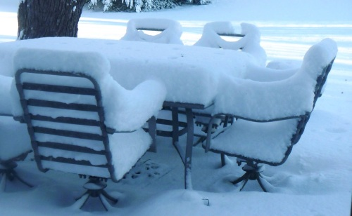 Yesterday's snowfall in Ann Arbor.