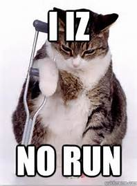 I Iz No Run - Bing Images