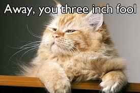 Shakespeare three inch fool meme